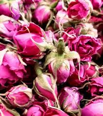 فروش غنچه گل محمدی در تهران